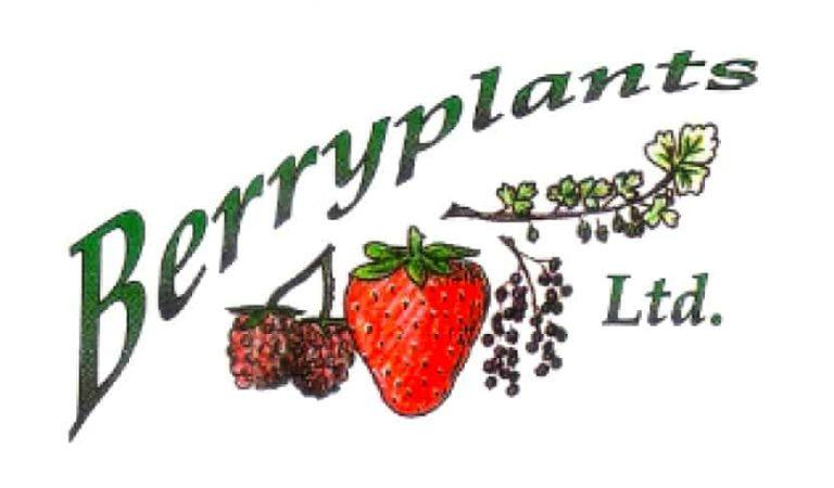 berryplants-logo